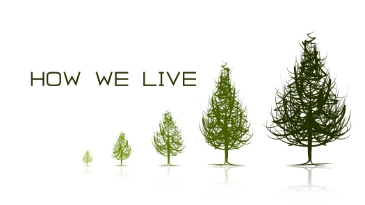 How We Live Graphic